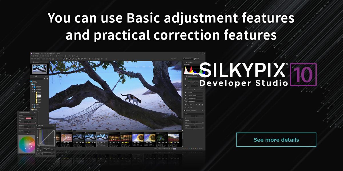 Silkypix developer studio 10
