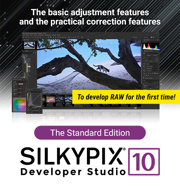 The basic adjustment features and the practical correction features | To develop RAW for the first time! | The Standard Edition SILKYPIX Developer Stuidio 10