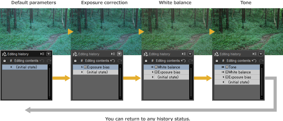 Default parameters / Exposure correction / White balance / Tone, You can return to any history status.