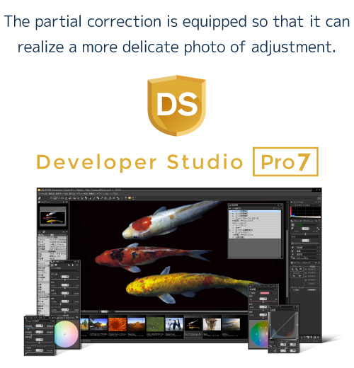 The partial correction is equipped so that it can realize a more delicate photo of adjustment. Developer Studio Pro7