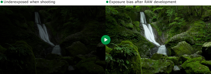 Exposure bias example