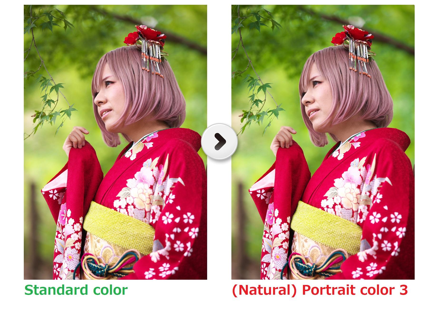 Portrait color 3
