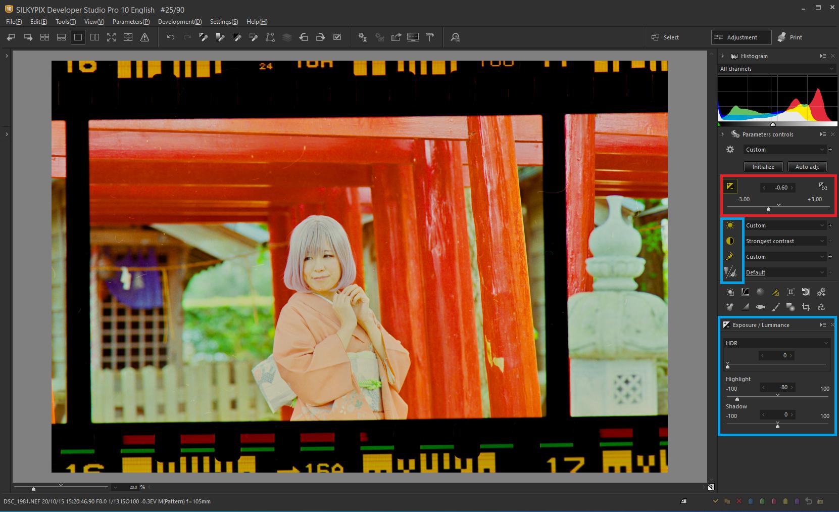 the Negative film inversion tool 2-1