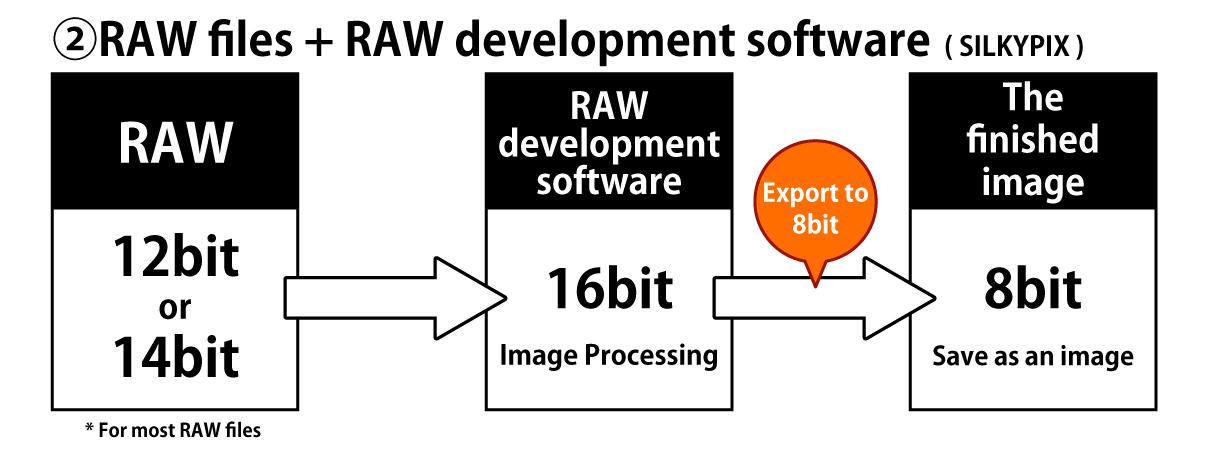 RAW files + RAW development software (SILKYPIX)