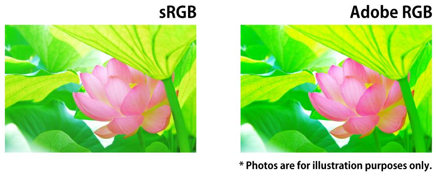 Example sRGB and Adobe RGB