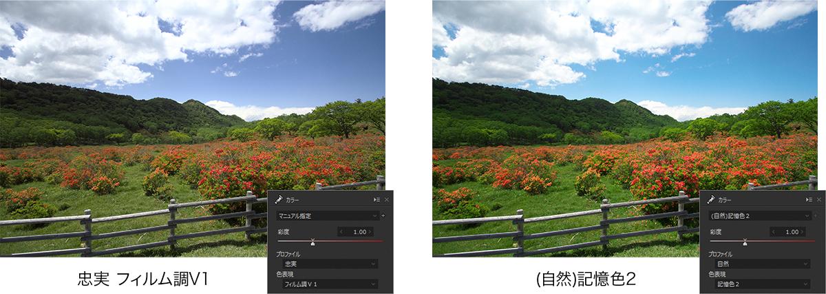 プロファイルと色表現の個別設定による調整例