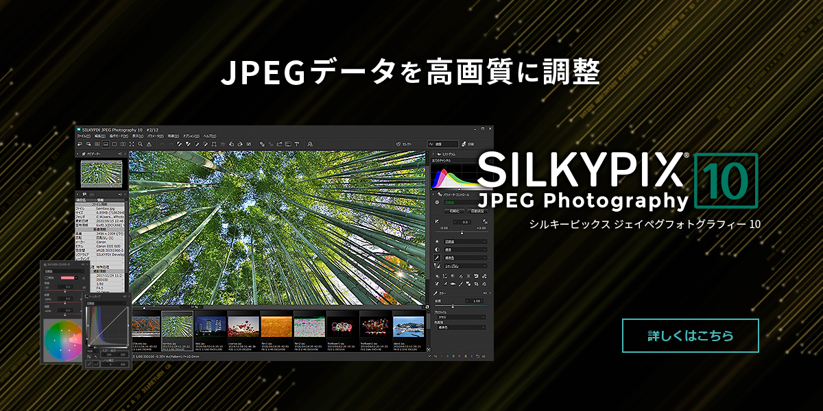 SILKYPIX JPEG Photography 10
