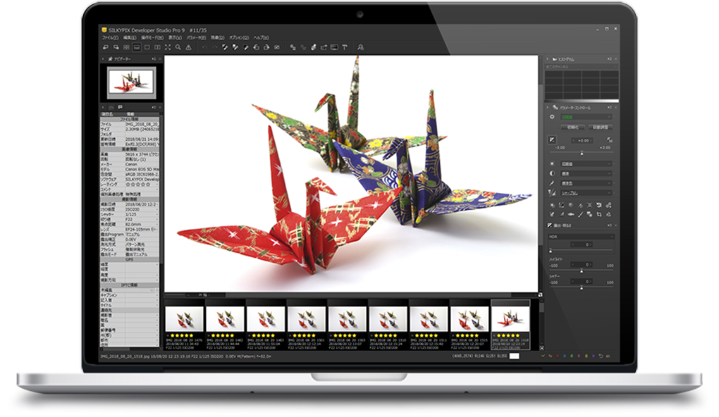 SILKYPIX Developer Studio Pro 9(Windows/macOS)