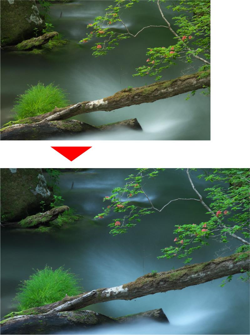 新緑の奥入瀬 ホワイトバランス調整