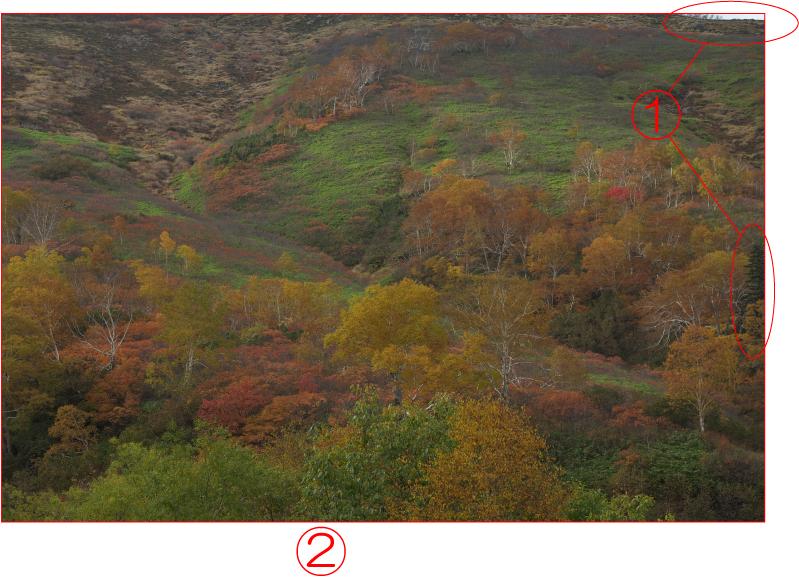 大雪山の秋 コントラストを調整