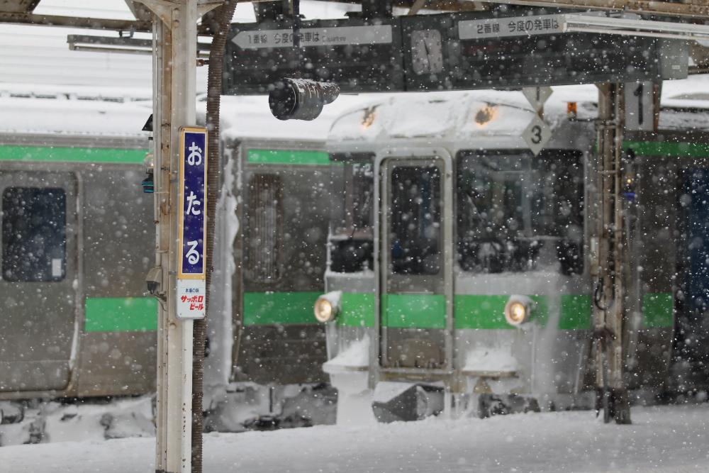 雪のモノクロ写真