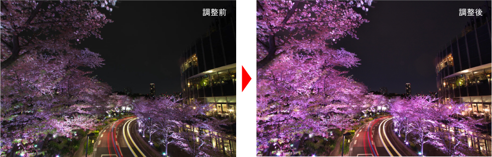 ライトアップの桜を綺麗に仕上げる