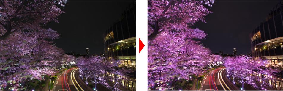 東京ミッドタウンにある桜並木が桜色にライトアップされます、今回はこの写真をRAW現像しました