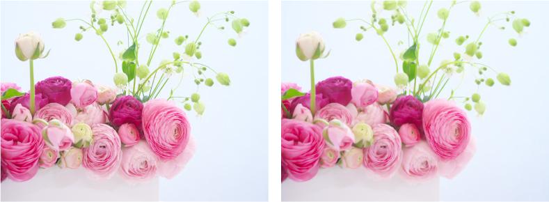 花の写真には明瞭度を下げる設定が効果的
