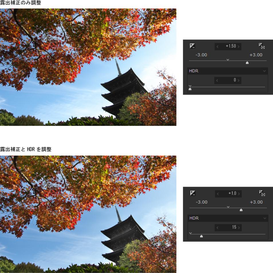 逆光の紅葉写真はHDRと露出補正