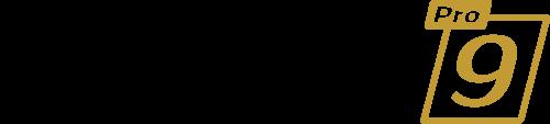 logo-dsp9
