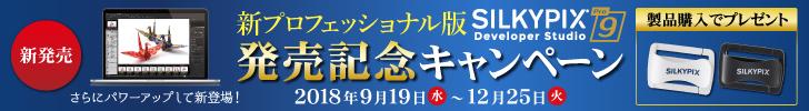 bnr_dsp9-launch-sales_728x100