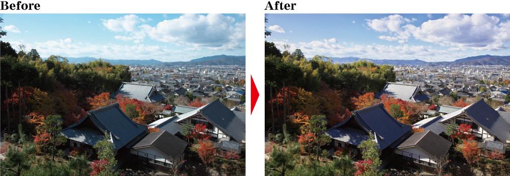 紅葉写真をRAW現像してきれいに仕上げる